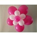 Ballonnenbloemen