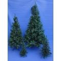 Huur 1x Set Dennenbomen/Kerstbomen